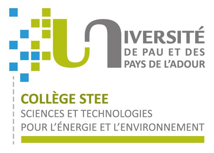 Logo STEE